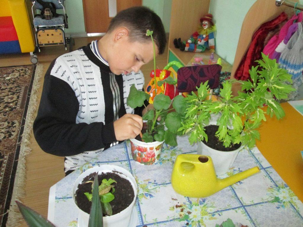 Занятие по трудовой терапии «Уход за комнатными растениями»